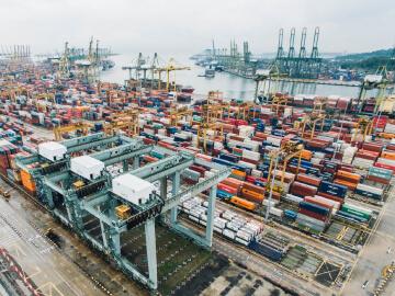 Container Dekontamination DCX